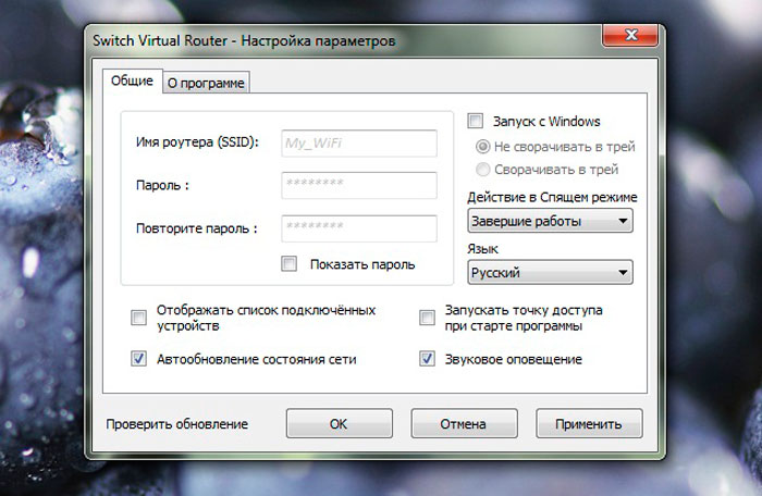 Опции Switch Virtual Router